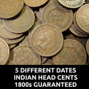 Lot of 5 Indian Head Cents - 5 Different Dates + 1 1800s cent guaranteed